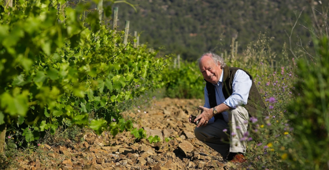 Trading the nomadic life of a wine merchant for that of a vigneron: Christopher Cannan of Clos Figueras