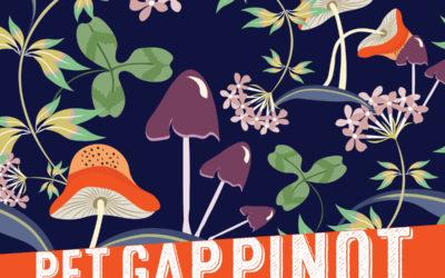 Introducing Pet Gap Pinot